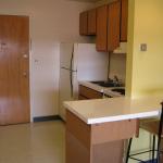 ann arbor university of michigan student housing